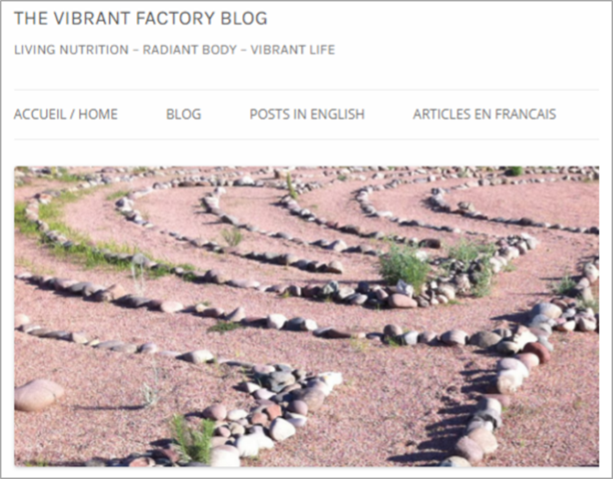 The Vibrant Factory Blog